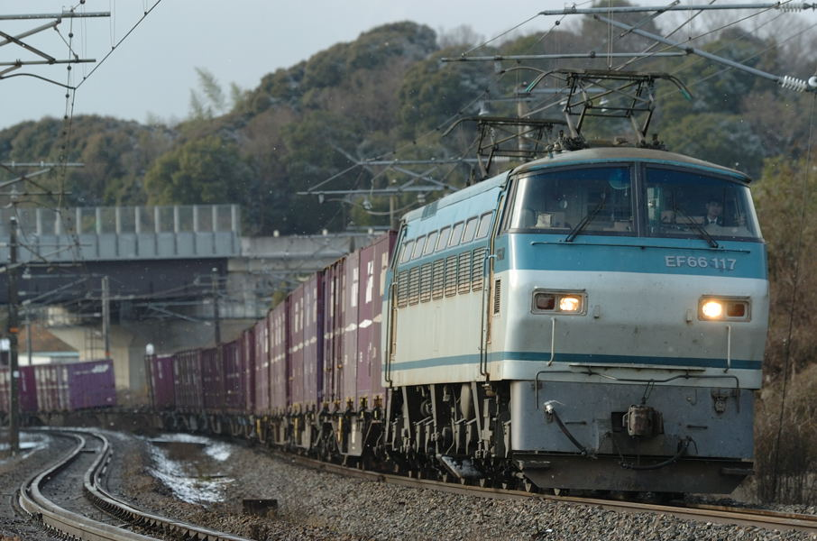 20090113_DSC_2961.jpg