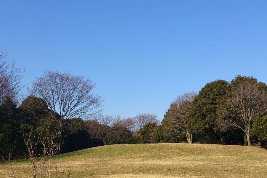 20130102_DSC_0004.jpg