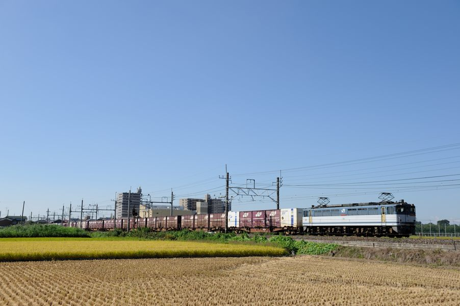 20140914_DSC_1977.jpg